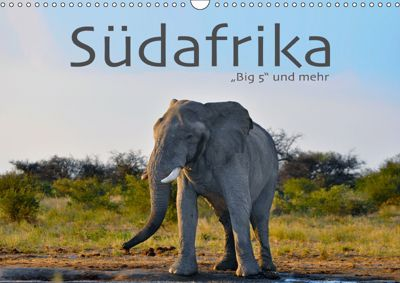 Südafrika - Big 5 und mehr (Wandkalender 2019 DIN A3 quer), Robert Styppa