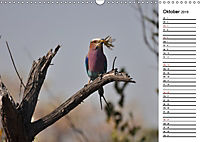 Südafrika - Big 5 und mehr (Wandkalender 2019 DIN A3 quer) - Produktdetailbild 10