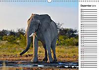 Südafrika - Big 5 und mehr (Wandkalender 2019 DIN A3 quer) - Produktdetailbild 12