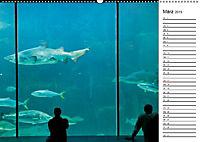 Südafrika - Kapstadt (Wandkalender 2019 DIN A2 quer) - Produktdetailbild 3