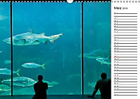 Südafrika - Kapstadt (Wandkalender 2019 DIN A3 quer) - Produktdetailbild 3