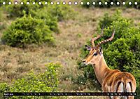Südafrika - Lesotho (Tischkalender 2019 DIN A5 quer) - Produktdetailbild 4