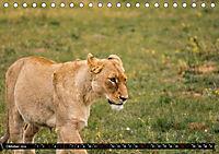 Südafrika - Lesotho (Tischkalender 2019 DIN A5 quer) - Produktdetailbild 10