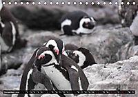 Südafrika - Lesotho (Tischkalender 2019 DIN A5 quer) - Produktdetailbild 12