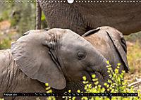 Südafrika - Lesotho (Wandkalender 2019 DIN A3 quer) - Produktdetailbild 2