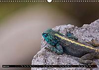 Südafrika - Lesotho (Wandkalender 2019 DIN A3 quer) - Produktdetailbild 6
