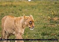Südafrika - Lesotho (Wandkalender 2019 DIN A3 quer) - Produktdetailbild 10