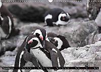 Südafrika - Lesotho (Wandkalender 2019 DIN A3 quer) - Produktdetailbild 12