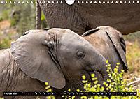Südafrika - Lesotho (Wandkalender 2019 DIN A4 quer) - Produktdetailbild 2