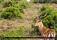 Südafrika - Lesotho (Wandkalender 2019 DIN A4 quer) - Produktdetailbild 4