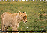 Südafrika - Lesotho (Wandkalender 2019 DIN A4 quer) - Produktdetailbild 10