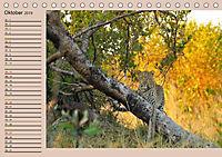 Südafrika - Planer (Tischkalender 2019 DIN A5 quer) - Produktdetailbild 10