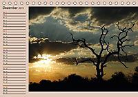 Südafrika - Planer (Tischkalender 2019 DIN A5 quer) - Produktdetailbild 12