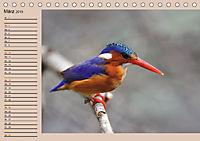 Südafrika - Planer (Tischkalender 2019 DIN A5 quer) - Produktdetailbild 3