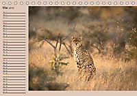 Südafrika - Planer (Tischkalender 2019 DIN A5 quer) - Produktdetailbild 5