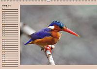 Südafrika - Planer (Wandkalender 2019 DIN A2 quer) - Produktdetailbild 3