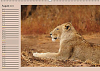 Südafrika - Planer (Wandkalender 2019 DIN A2 quer) - Produktdetailbild 8