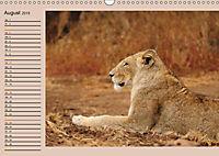 Südafrika - Planer (Wandkalender 2019 DIN A3 quer) - Produktdetailbild 8