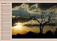 Südafrika - Planer (Wandkalender 2019 DIN A3 quer) - Produktdetailbild 12