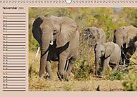 Südafrika - Planer (Wandkalender 2019 DIN A3 quer) - Produktdetailbild 11