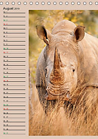 Südafrika und seine Tierwelt (Tischkalender 2019 DIN A5 hoch) - Produktdetailbild 8