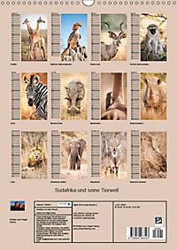 Südafrika und seine Tierwelt (Wandkalender 2019 DIN A3 hoch) - Produktdetailbild 13