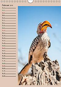 Südafrika und seine Tierwelt (Wandkalender 2019 DIN A4 hoch) - Produktdetailbild 2