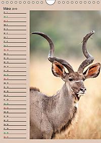 Südafrika und seine Tierwelt (Wandkalender 2019 DIN A4 hoch) - Produktdetailbild 3