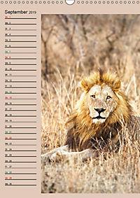 Südafrika und seine Tierwelt (Wandkalender 2019 DIN A3 hoch) - Produktdetailbild 9