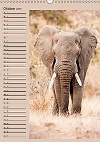 Südafrika und seine Tierwelt (Wandkalender 2019 DIN A3 hoch) - Produktdetailbild 10