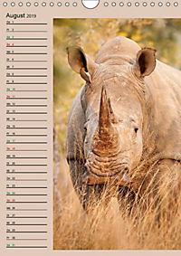 Südafrika und seine Tierwelt (Wandkalender 2019 DIN A4 hoch) - Produktdetailbild 8