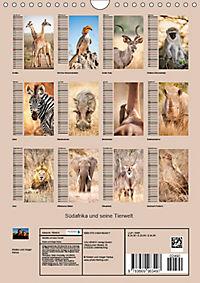 Südafrika und seine Tierwelt (Wandkalender 2019 DIN A4 hoch) - Produktdetailbild 13