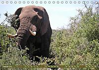 Südafrika - Von Kapstadt bis Addo Elephant Park (Tischkalender 2019 DIN A5 quer) - Produktdetailbild 2