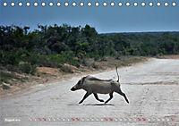 Südafrika - Von Kapstadt bis Addo Elephant Park (Tischkalender 2019 DIN A5 quer) - Produktdetailbild 8