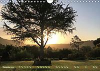 Südafrika - Von Kapstadt bis Addo Elephant Park (Wandkalender 2019 DIN A4 quer) - Produktdetailbild 12