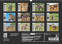 SÜDAFRIKAS Bergzebras (Wandkalender 2019 DIN A3 quer) - Produktdetailbild 13