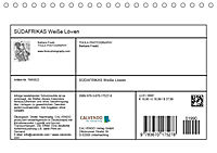 SÜDAFRIKAS Weisse Löwen (Tischkalender 2019 DIN A5 quer) - Produktdetailbild 13