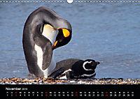 """Südpatagonien - das """"Ende"""" der Welt (Wandkalender 2019 DIN A3 quer) - Produktdetailbild 11"""