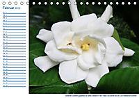 Südsee-Insel Mo'orea (Tischkalender 2019 DIN A5 quer) - Produktdetailbild 2