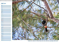 Südsee-Insel Mo'orea (Wandkalender 2019 DIN A3 quer) - Produktdetailbild 7