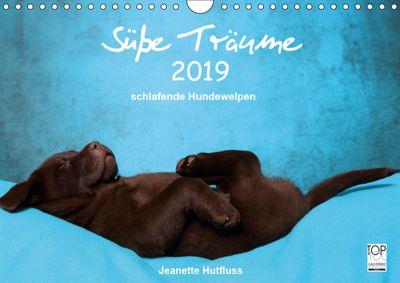 Süße Träume 2019 - schlafende Hundewelpen (Wandkalender 2019 DIN A4 quer), Jeanette Hutfluss