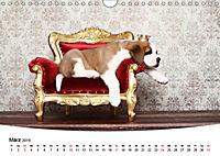Süße Träume 2019 - schlafende Hundewelpen (Wandkalender 2019 DIN A4 quer) - Produktdetailbild 3