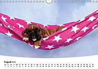 Süße Träume 2019 - schlafende Hundewelpen (Wandkalender 2019 DIN A4 quer) - Produktdetailbild 8