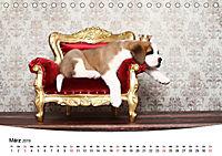 Süße Träume 2019 - schlafende Hundewelpen (Tischkalender 2019 DIN A5 quer) - Produktdetailbild 3