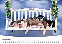 Süsse Träume 2019 - schlafende Hundewelpen (Wandkalender 2019 DIN A2 quer) - Produktdetailbild 2
