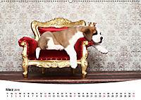 Süsse Träume 2019 - schlafende Hundewelpen (Wandkalender 2019 DIN A2 quer) - Produktdetailbild 3