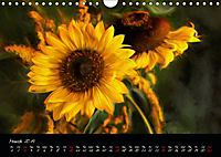 Sunflowers - Floral Impressions (Wall Calendar 2019 DIN A4 Landscape) - Produktdetailbild 3