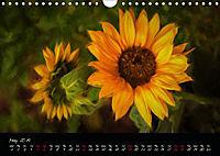 Sunflowers - Floral Impressions (Wall Calendar 2019 DIN A4 Landscape) - Produktdetailbild 5