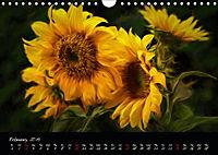 Sunflowers - Floral Impressions (Wall Calendar 2019 DIN A4 Landscape) - Produktdetailbild 2