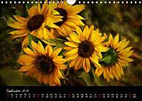 Sunflowers - Floral Impressions (Wall Calendar 2019 DIN A4 Landscape) - Produktdetailbild 9